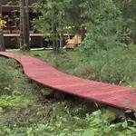 Дорожка из дерева на блоках