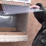 Простые изобретения в курятнике