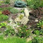 Типы альпинариев и выбор растений для них