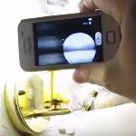 Светодиодные лампочки вредят здоровью?